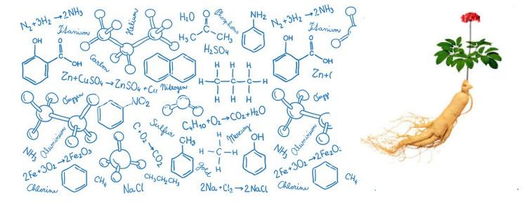 molecule de saponine et ginsenoside