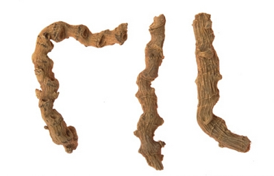Panax japonicus
